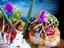 Restaurant Maiko Sushi